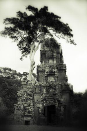cambodia-484-3